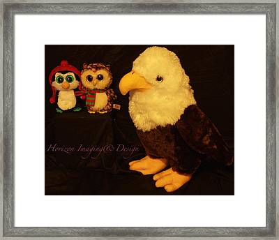 Birds Of A Feather Framed Print by John Strapp