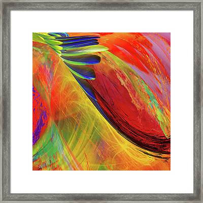 Birds Of A Feather Framed Print by Mac Titmus