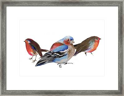Birds Of A Feather Framed Print by Nancy Moniz
