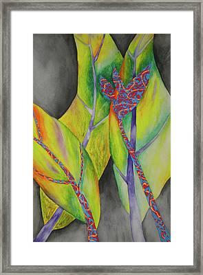 Birds Of Bananas  Framed Print