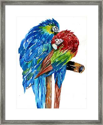 Birds Of Color Framed Print by Marilyn Barton