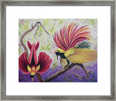 Birds Of Paradise Framed Print by Suzanne  Marie Leclair