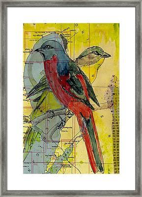Birds On A Map Framed Print