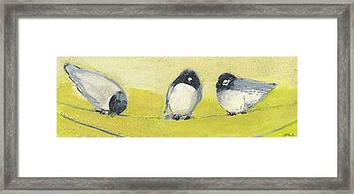 Birds On A Wire Framed Print by Jennifer Lommers