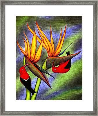 Birds On Birds Framed Print