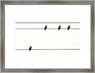 Birds On Power Lines Framed Print