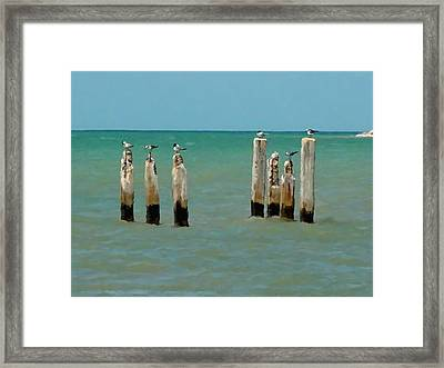 Birds On Sticks Framed Print by David  Van Hulst