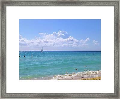 Framed Print featuring the photograph Birds On The Beach M4 by Francesca Mackenney