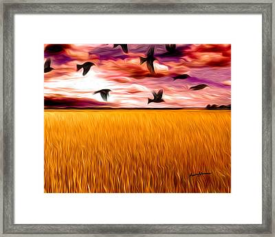 Birds Over Wheat Field Framed Print