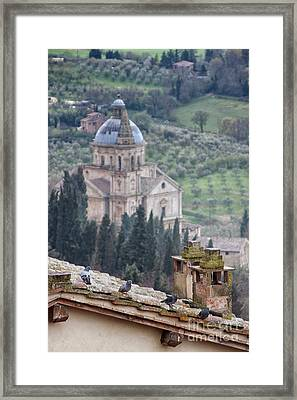 Birds Overlooking The Countryside Framed Print