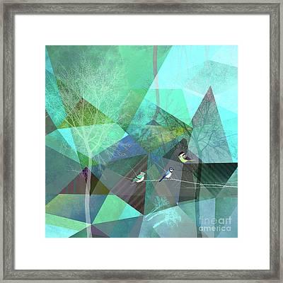 Birds P19 Framed Print