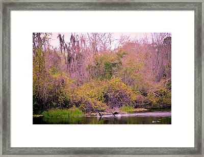 Framed Print featuring the photograph Birds Playing In The Pond 1 by Madeline Ellis