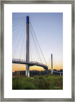 Birds Soaring Over Bob Kerry Bridge Framed Print