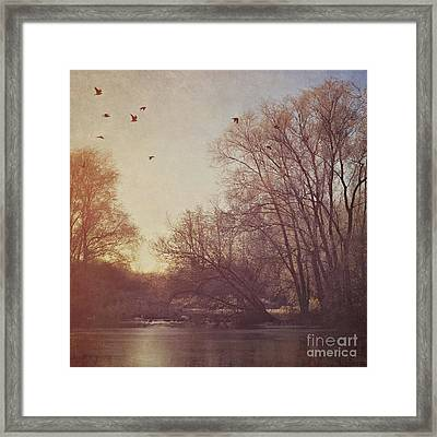 Framed Print featuring the photograph Birds Take Flight Over Lake On A Winters Morning by Lyn Randle