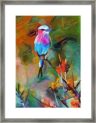 Bird's View Framed Print by Wayne Pascall
