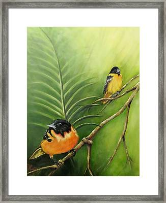 On The Lookout, Birds  Framed Print
