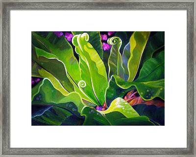 Birdsnest Out Back Framed Print