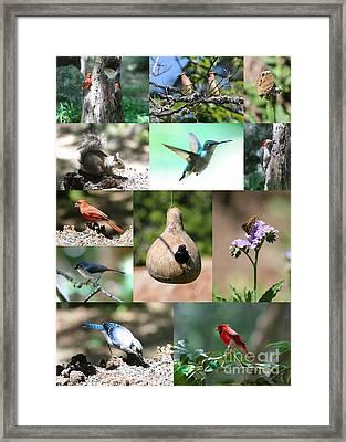 Birdsong Nature Center Collage Framed Print