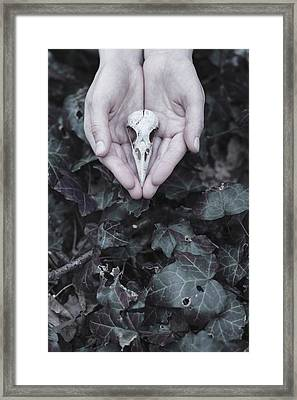 Birdy Framed Print by Art of Invi