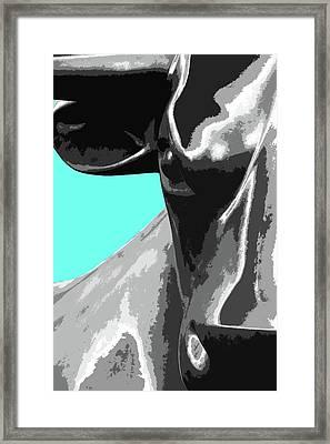 Birmingham Bull Framed Print