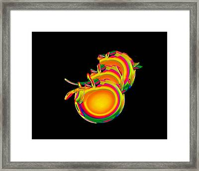 Birth Framed Print by Jacqueline Migell