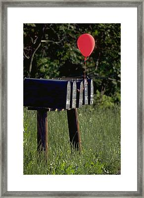 Birthday Balloon Framed Print by Carl Purcell