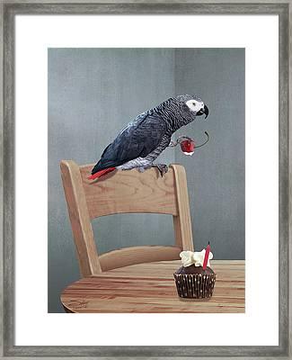 Birthday Bird Framed Print