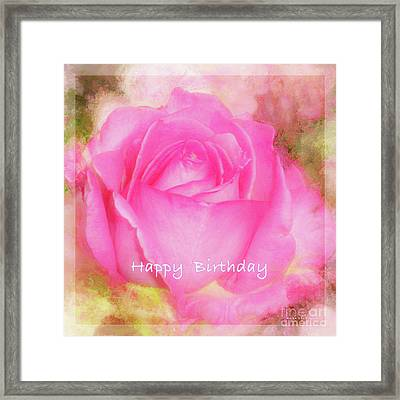 Birthday Rose Pastel Soft Sorbet 6 Framed Print