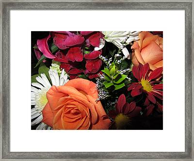 Birthday Surprise Framed Print by Dona McKee