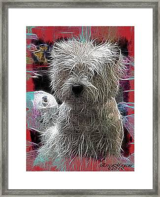 Framed Print featuring the photograph Bishon Frise by EricaMaxine  Price