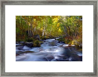 Bishop Creek In Fall Eastern Sierra Photograph Framed Print
