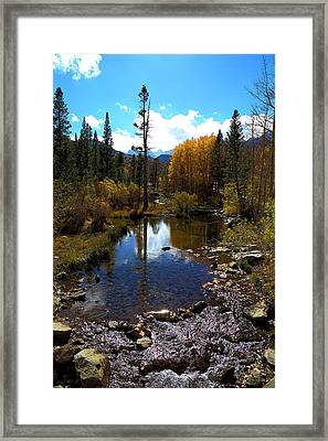 Bishop Creek In Fall Framed Print