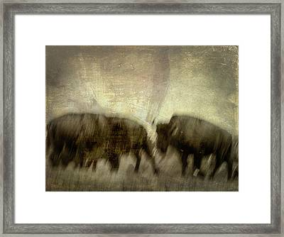 Framed Print featuring the photograph Bison 3 by Joye Ardyn Durham