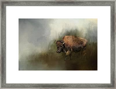 Bison After The Mud Bath Framed Print by Jai Johnson
