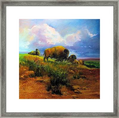 Bison Bluff Framed Print by Robert Carver