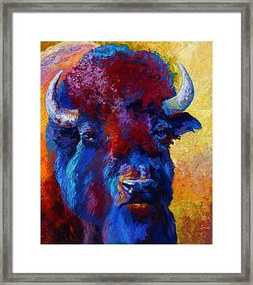 Bison Boss Framed Print by Marion Rose