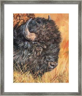 Framed Print featuring the painting Bison by David Stribbling