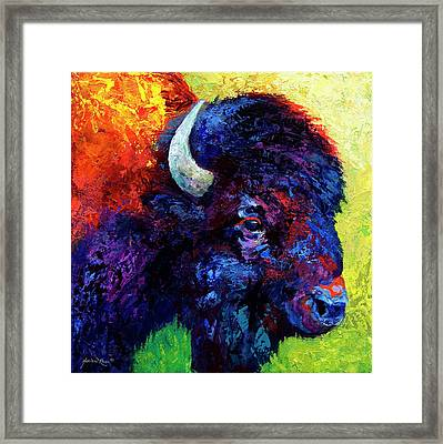 Bison Head Color Study IIi Framed Print by Marion Rose