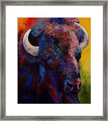 Bison Head Study Framed Print by Marion Rose