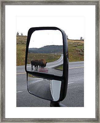 Bison In My Rear View Framed Print