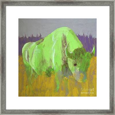 Bison On The American Plains Framed Print