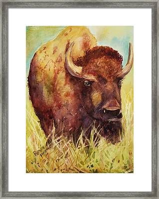 Bison Or Buffalo Framed Print by Patricia Pushaw