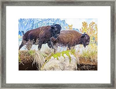 Framed Print featuring the digital art Bison Pair by Ray Shiu