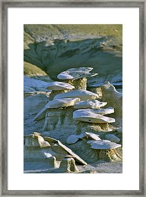 Bisti Badlands, Nm 55 Framed Print by Jeff Brunton