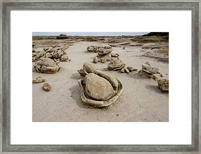 Bisti Egg Factory 3 / De-na-zin Wilderness - Farmington New Mexico Framed Print by Brian Harig
