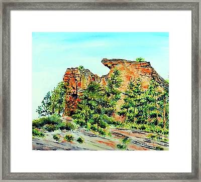 Bitterroot Cliffs Framed Print by Tracy Rose Moyers