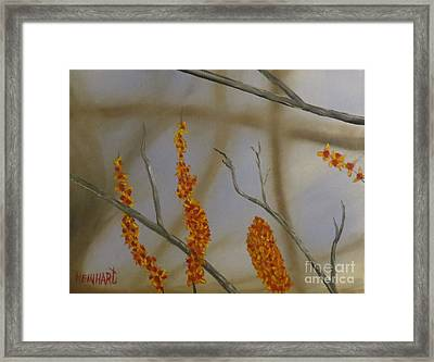 Bittersweet Framed Print by Ron Reinhart