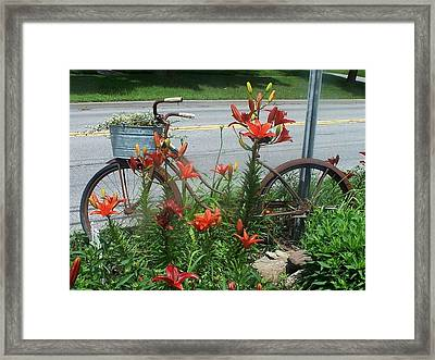 Biycle Flowers Framed Print