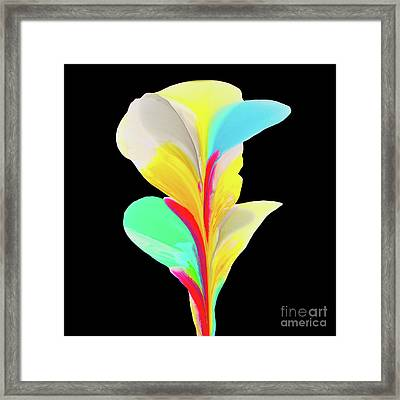 Black #7 Framed Print