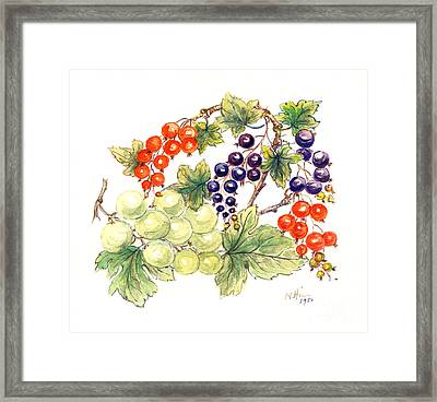 Black And Red Currants With Green Grapes Framed Print